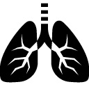 lungs jpg